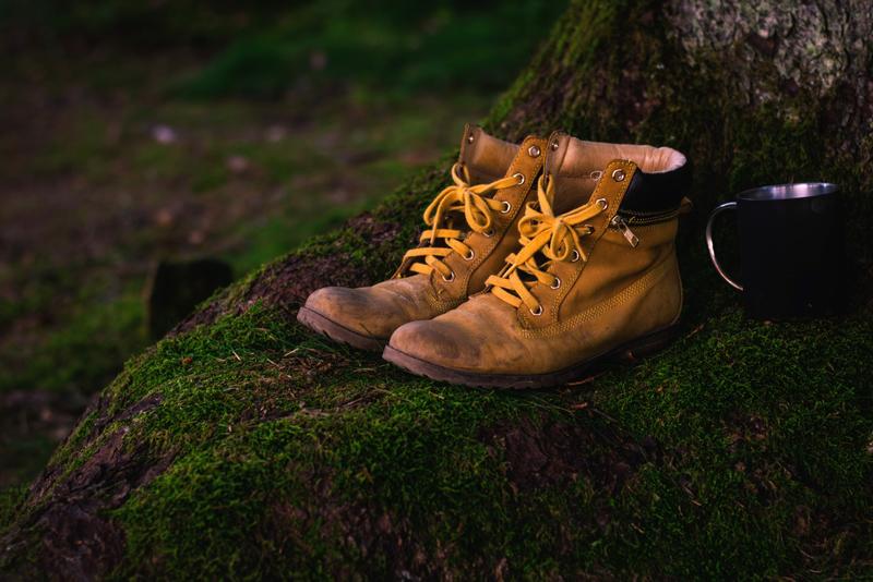 Wild, Strangers, Photo Credit: www.goodfreephotos.com/